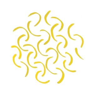 NOSHY lemon